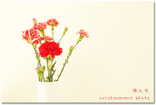 yurukomaman4.jpg